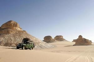 safari dans le désert 2 photo