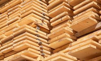 poteaux en bois frais photo