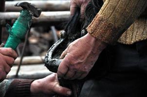 maréchal-ferrant sabre un fer à cheval