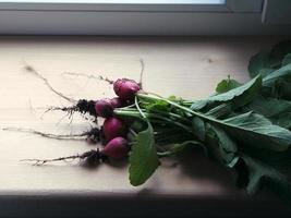 radis frais sur le rebord de la fenêtre en bois photo