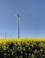 moulin à vent, groupe de moulins à vent alignés pour une alternative de production d'énergie électrique photo
