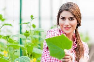 beau, jeune femme, jardinage photo
