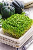 pousses de brocoli dans l'assiette écologique en bambou