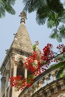 université de mumbai photo
