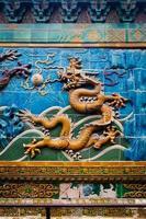 mur de dragon photo