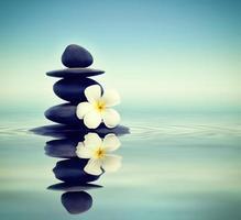 pierres zen avec frangipanier