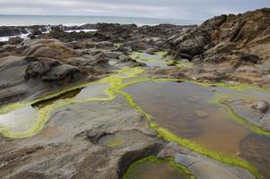plage d'état de haricot creux photo