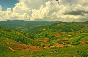 plantations sur les pentes des collines photo
