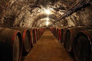 cave à vin photo