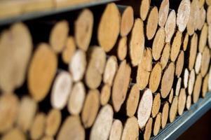 texture et fond de souches d'arbre