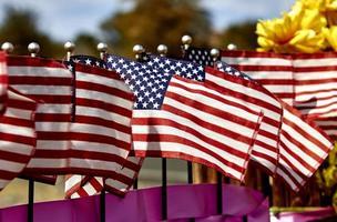 rangée de drapeaux américains photo
