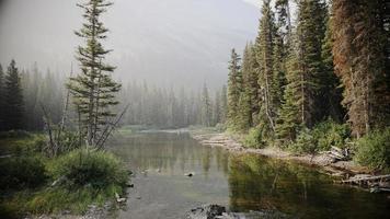 ruisseau de montagne, air enfumé et pêcheur photo
