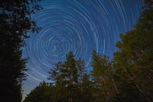 forêt sur fond de ciel étoilé photo