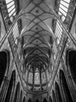 plafond cathédrale saint vitus photo