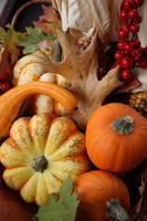 Thanksgiving récolte d'automne