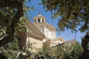 église à travers les rameaux d'olivier photo