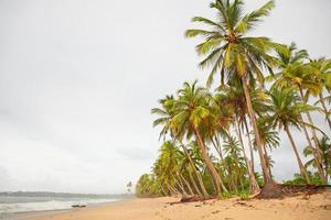 jour de pluie sur une île tropicale photo