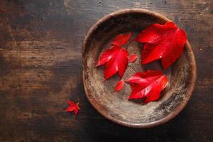 feuille d'automne nature morte photo