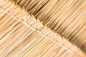 la texture du toit de chaume de la cabane.