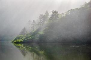 parc national de séquoia