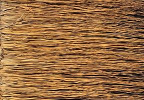 surface d'herbe sèche jaune