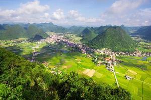 rizière vallée bac son fils, vietnam photo
