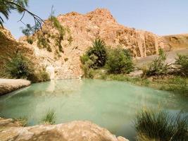 oasis sur le désert 3 photo