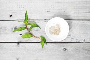 rau ram - coriandre vietnamienne et sel et poivre photo