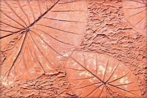 marques de feuilles sur le béton photo