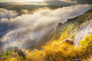 aube brumeuse sur les montagnes boisées