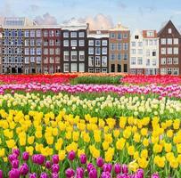 vieux canal d'amsterdam photo