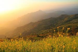 soleil sur la montagne photo