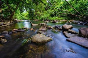 ruisseau de montagne dans les bois photo