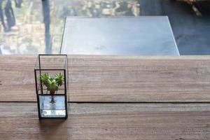 décor succulent sur table photo