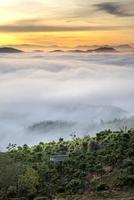 arbres parmi les collines brumeuses et le coucher du soleil
