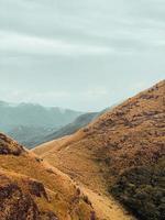 montagnes vertes et brunes