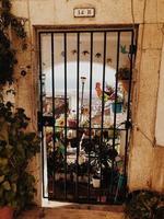fleurs vues à travers un portail en métal noir photo