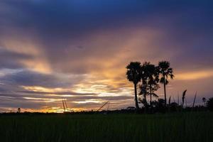 coucher de soleil jaune et violet photo