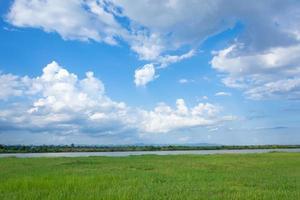 champ vert avec rivière et ciel bleu