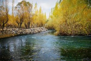 ruisseau qui coule à travers un feuillage coloré