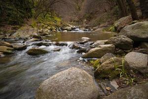 vue sur la rivière qui fait rage sur l'eau