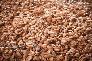 tas de coquilles de noix d'argan photo