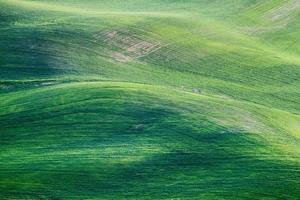 collines de montagnes vertes