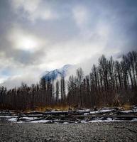 arbres et montagnes sous un ciel nuageux