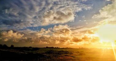 champ d'herbe verte sous un ciel nuageux