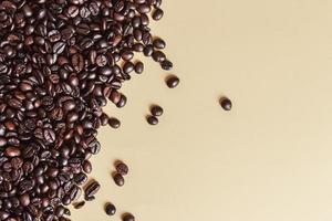 Grains de café torréfiés sur fond uni