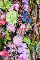 fleurs colorées photo
