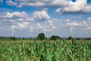 Éolienne d'énergie alternative sur fond de ciel sur le manioc photo