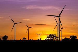 Ferme éolienne au crépuscule photo
