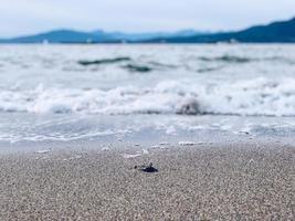 Gros plan du sable par l'eau